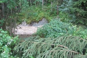 Hochwasser 6. August 2017, Lintsching Liegnitzbach IMG_0878
